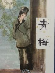 【首发】聊斋之青梅_王玥波评书