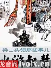 赵玉平_水浒智慧-梁山头领那些事_百家讲坛