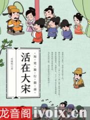 大宋市井生活有声小说打包下载